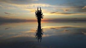 抽象阴影日落在撒拉族De Uyuni,玻利维亚 库存图片