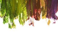 抽象画笔对跟踪的被绘的实际冲程纹理是 免版税库存照片