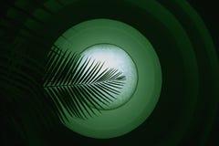 抽象绿色叶子 库存例证