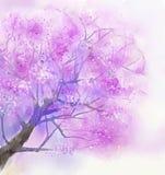 抽象紫色树开花绘画 免版税库存图片
