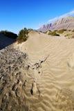 抽象黄色沙丘海滩山在兰萨罗特岛西班牙 库存照片