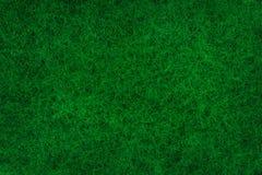 抽象绿色生苔背景 图库摄影