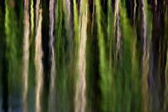 抽象绿色自然本底 免版税库存图片