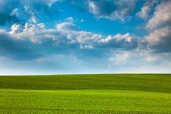 抽象绿色领域和蓝天背景 免版税库存照片