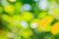 抽象bokeh和被弄脏的绿色自然背景 图库摄影