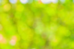 抽象bokeh和被弄脏的绿色自然背景 免版税库存照片