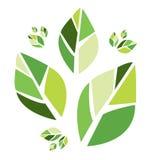 抽象eco叶子 向量例证