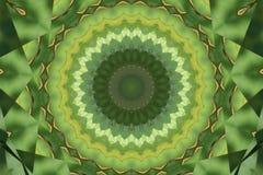 抽象kaeleidoscope绿色 图库摄影
