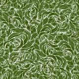 抽象scrollwork无缝的样式,传染媒介背景 绿色植物,草,卷毛,挥动 自然风格化花饰 手 免版税库存照片