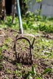 担任主角手耕地机工作土壤,除草庭院 浓缩 免版税库存照片