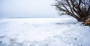 负担在春天月结冰的密执安湖行军 库存图片