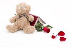 负担红色玫瑰和一本好书读在白色 免版税库存照片