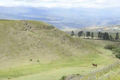 拉丁拉丁美洲的美丽如画的山景 库存图片