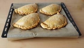 拉丁美洲的盘empanada 库存图片