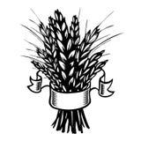 拉伊,麦子。黑色&白色 免版税库存照片