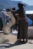 拉利贝拉, Wollo,埃塞俄比亚,大约2007年2月:妇女打谷的teff 库存照片
