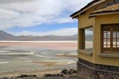 拉古纳Colorada在玻利维亚 库存图片