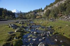 拉古纳de Laja国家公园,智利 库存图片