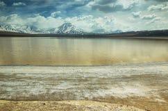 拉古纳lejia (漂白湖)在阿塔卡马地区 免版税库存图片