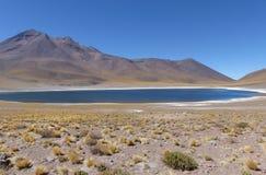 拉古纳Miniques,阿塔卡马沙漠,智利 免版税库存图片