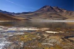 拉古纳Miscanti在阿塔卡马沙漠-智利 免版税库存照片