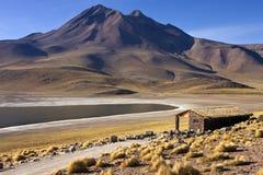 拉古纳Miscanti在高安第斯山脉在阿塔卡马Deser 免版税库存图片