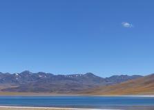 拉古纳Miscanti,阿塔卡马沙漠,智利 库存图片