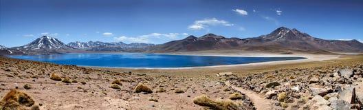 拉古纳Miscanti - Atacama全景  库存照片