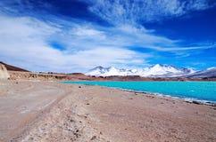 拉古纳Verde在智利 库存照片