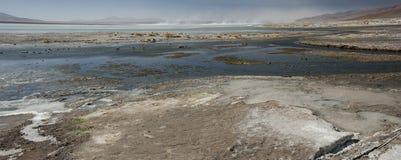 拉古纳y Termas de Polques与撒拉族de Chalviri的温泉水池在背景,撒拉族de Uyuni,波托西,玻利维亚中 图库摄影