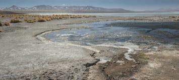 拉古纳y Termas de Polques与撒拉族de Chalviri的温泉水池在背景,撒拉族de Uyuni,波托西,玻利维亚中 免版税库存照片