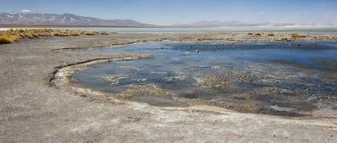 拉古纳y Termas de Polques与撒拉族de Chalviri的温泉水池在背景,撒拉族de Uyuni,波托西,玻利维亚中 免版税库存图片