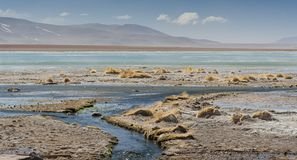 拉古纳y Termas de Polques与撒拉族de Chalviri的温泉水池在背景,撒拉族de Uyuni,波托西,玻利维亚中 库存图片