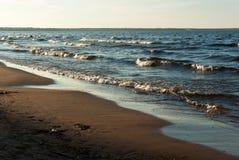 拉多加湖海滩 免版税库存照片