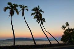 拉奈岛看法从前面街道的在毛伊的Lahaina 免版税库存照片