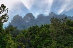 拉帕尔玛岛:塔武连特山国家公园 免版税图库摄影