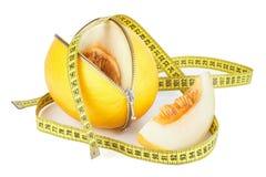 拉开拉链的瓜和测量的磁带 免版税图库摄影