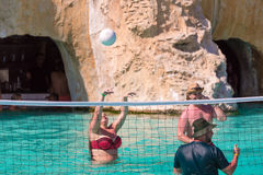 巴拉德罗角,马坦萨斯,古巴- 2017年5月18日:人在水池的戏剧排球 复制文本的空间 库存照片