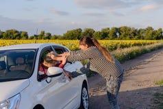 拉扯汽车司机的头发的积极的妇女 免版税库存照片