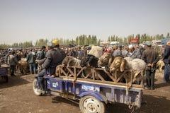 拉扯绵羊,星期天家畜的拖车摩托车销售, Kas 免版税库存照片