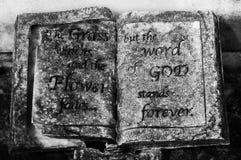 拉斐特公墓 免版税库存照片