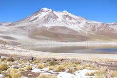 拉斯卡尔火山火山 免版税图库摄影