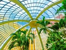 拉斯维加斯,美利坚合众国- 2016年5月05日:在海市蜃楼旅馆和赌博娱乐场的棕榈树小条的 图库摄影