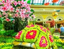拉斯维加斯,美利坚合众国- 2016年5月05日:日本花园在豪华旅馆贝拉焦 免版税库存图片