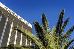 拉斯维加斯, Nevada/USA-03/22/2016曼德勒海湾赌博娱乐场和旅馆豪华旅游胜地在拉斯维加斯,有棕榈树的 免版税库存照片