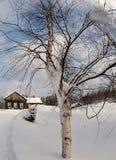 拉普兰在冬天,当白色冷的雪coveres树和房子时 库存图片