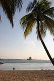 巴拉望岛海滩Sontosa海岛新加坡01 免版税库存照片