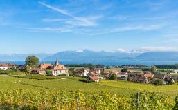 拉沃葡萄园梯田地区的葡萄园在湖Leman & x28的; Geneva& x29湖; 图库摄影
