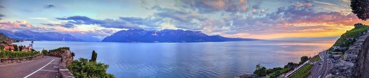 拉沃葡萄园梯田地区的,沃州,瑞士全景 免版税库存图片