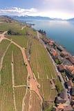 拉沃葡萄园梯田是在沃州小行政区的一个区域在瑞士 库存图片